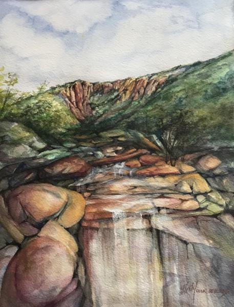 High Desert Draw After A Rain