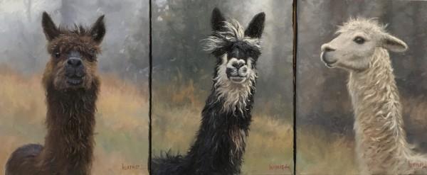 Alpaca triptic