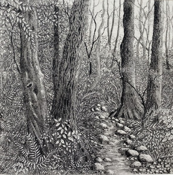 The path through the woods
