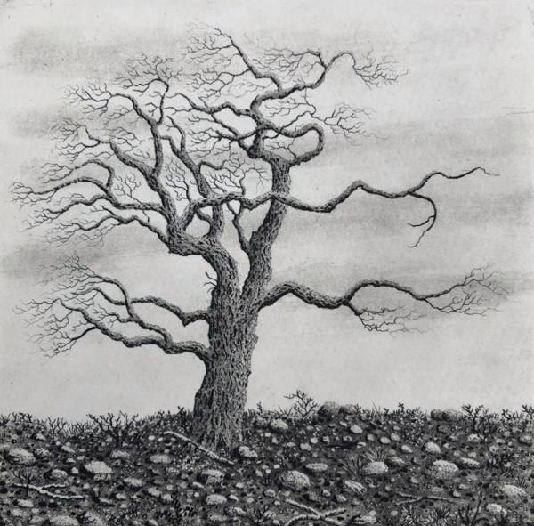 Tree series III