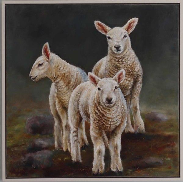 Ingram Lambs