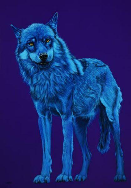 BLUE WOLF, 2006