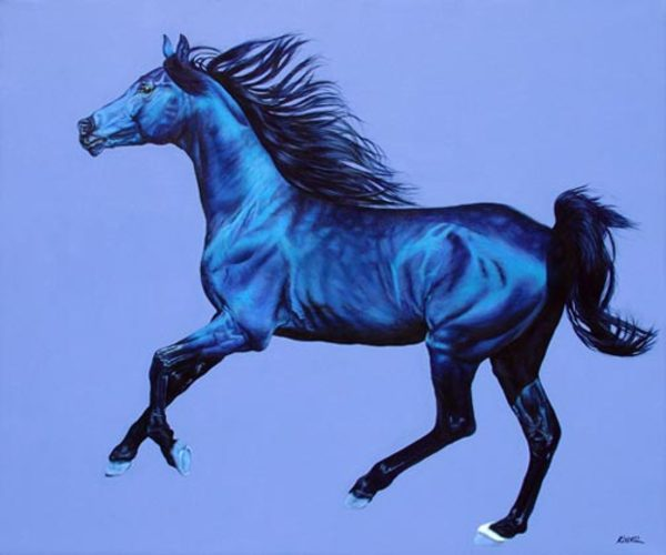 ARABIAN STALLION IN BLUE & BLACK, 2007