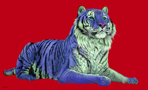 TIGER ON RED, 2008