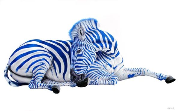 ZEBRA ON WHITE, 2009
