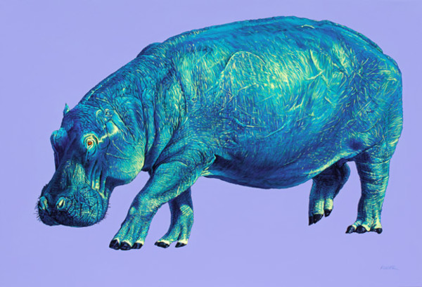 HIPPO ON PURPLE, 2011