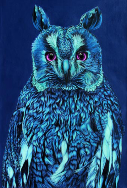 OWL ON BLUE, 2011
