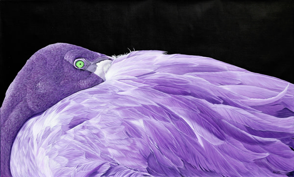 PURPLE FLAMINGO, 2012
