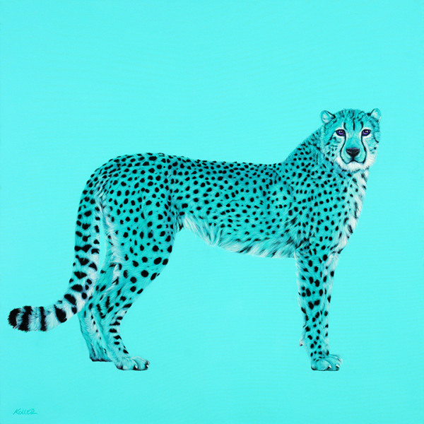 CHEETAH IN COBALT TEAL, 2014