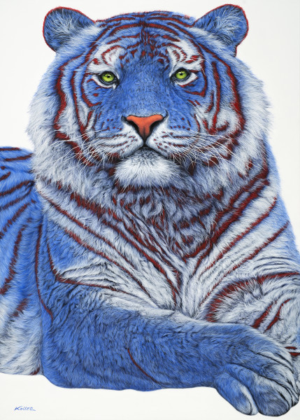 SIBERIAN TIGER IN BLUE, 2018