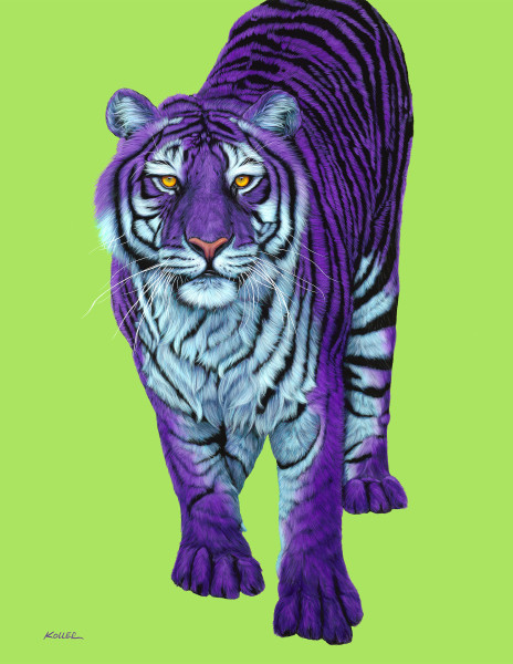 PURPLE TIGER WITH BLACK STRIPES, 2009