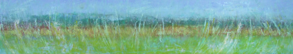 Edge of the Field 12x60