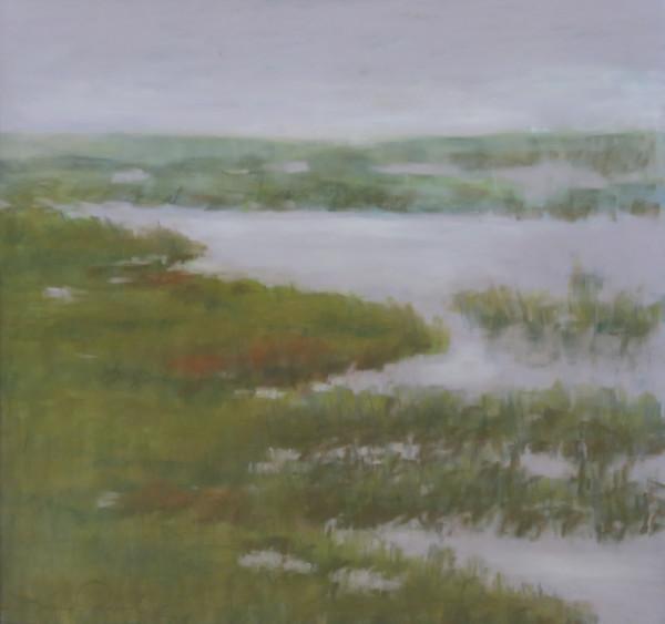 Marsh Impressions