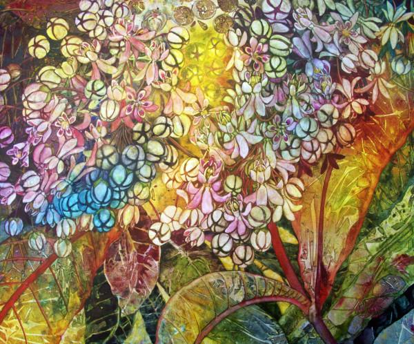 Milkweed Flower: Secundum Naturam (Following Nature)