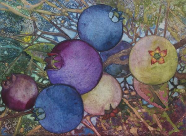 Wild Blueberries III