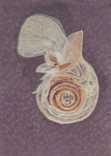 Pteropod (Limacina helicina), framed