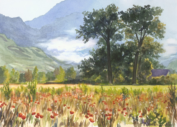 Poppy Fields, Lyons