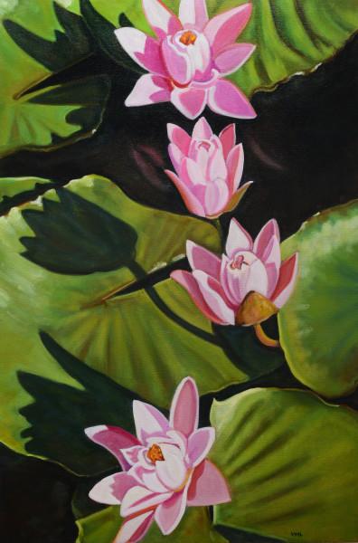 Lily Pond 4 Arts