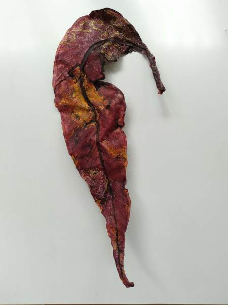 Gum Leaf .. Large .. (19153)