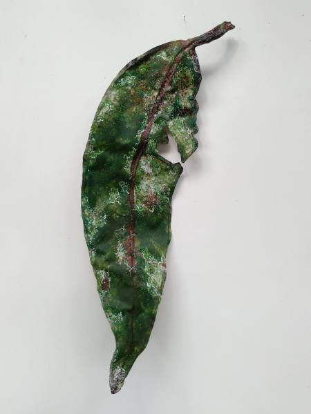 Gum Leaf .. Large .. (19155)