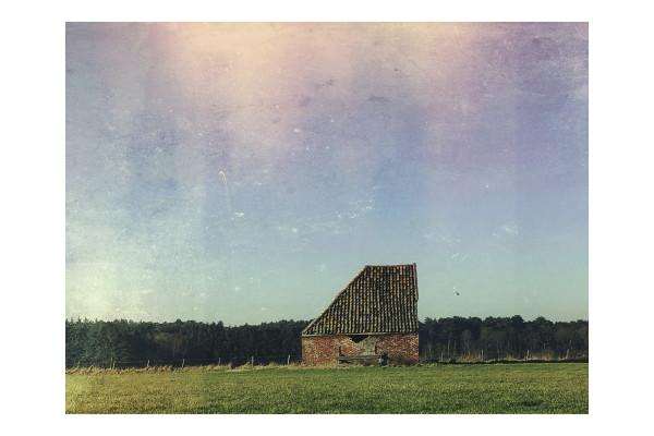 Schapenboet Den Hoorn Texel