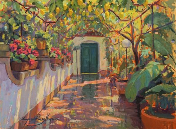 Garden of lemon trees after the rain