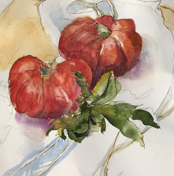 fresh tomatoes 954