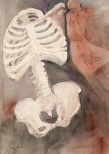 Lesley_A._Powell_Dance_of_the_Skeleton_Torso_watercolor_20x14._6_dwtwn1_5
