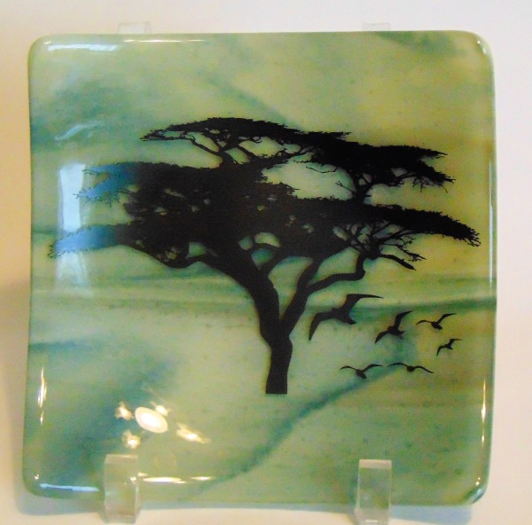 Sushi style plate with tree sillouette