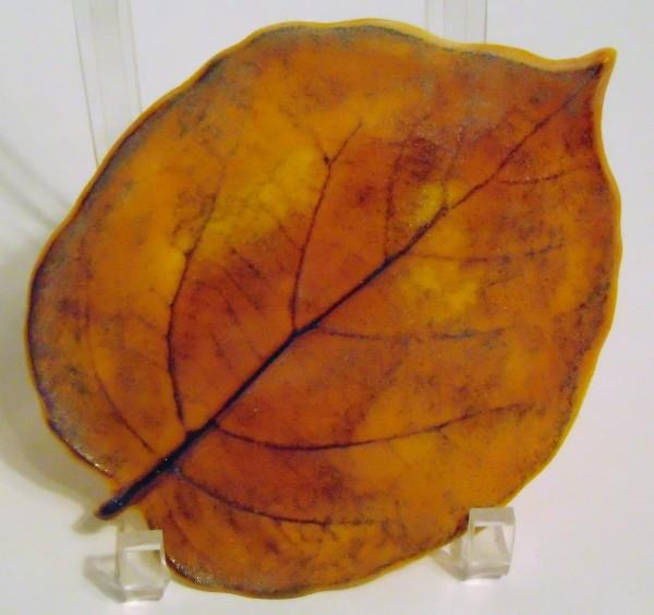 Kiwi Leaf-Thin Casting