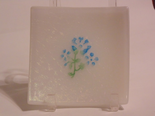 Small Dish-White irid with blue flower