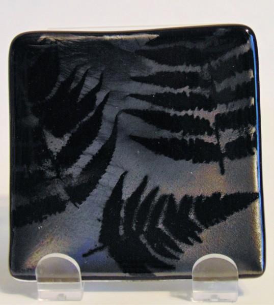 Small Plate-Ferns on Silver Irid