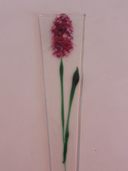 Plant Stake-Red/White Delphinium
