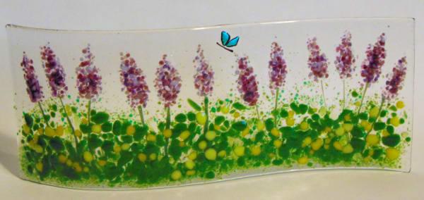 Garden Curve-Lavender Field