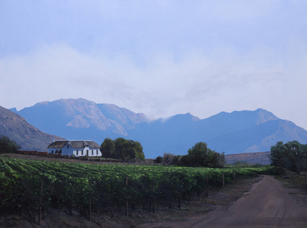 Western Cape Early Vines
