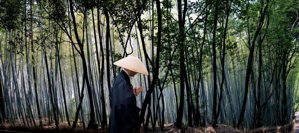 """""""Bamboo Monk"""" Kyoto, Japan"""