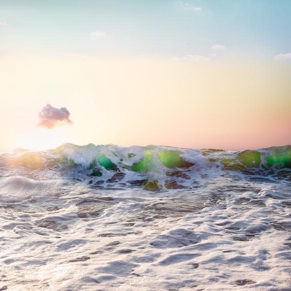 """""""Foamy & Fluffy"""" Hermosa Beach, California"""