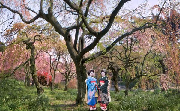 """Tokyo Blossom Twins"" Japan"