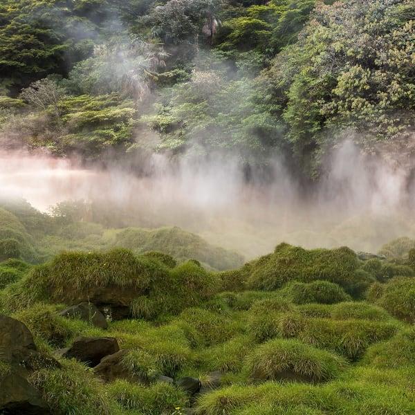 """Beppu Over Iguazu"" Japanese hot spring and Brazilian waterfall grass, 2011"