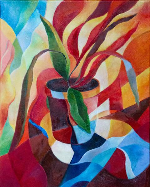 Bromeliad pot