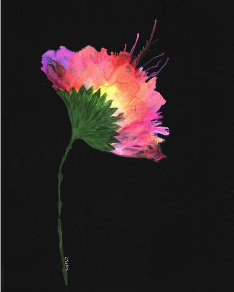 Floral Bloom #1