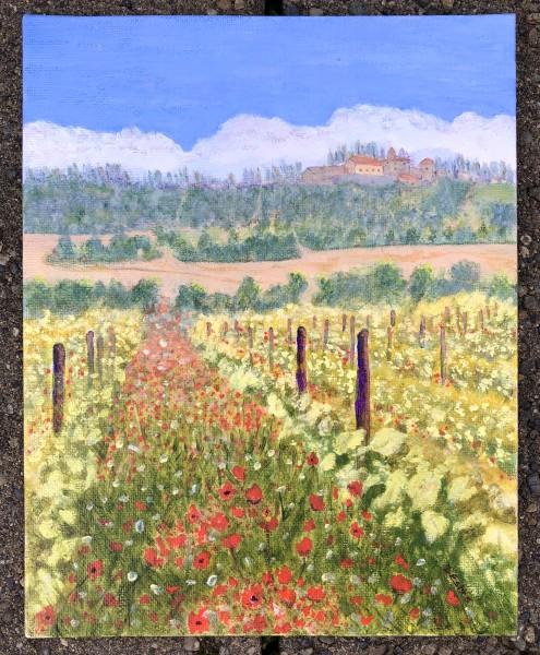 San Regolo de Bolio vineyard