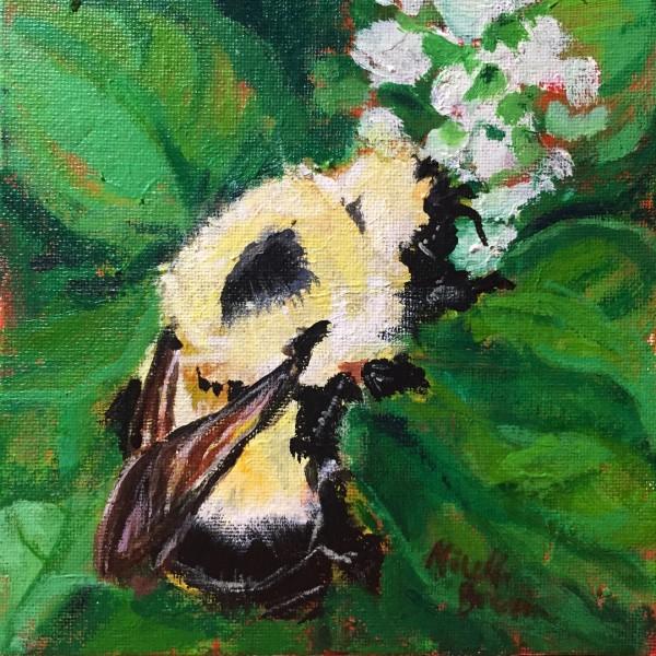 Bumblebee and Basil
