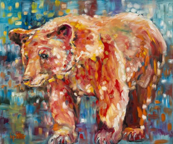 Ursa Minor Light