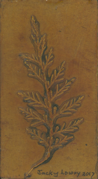 Cypress 4