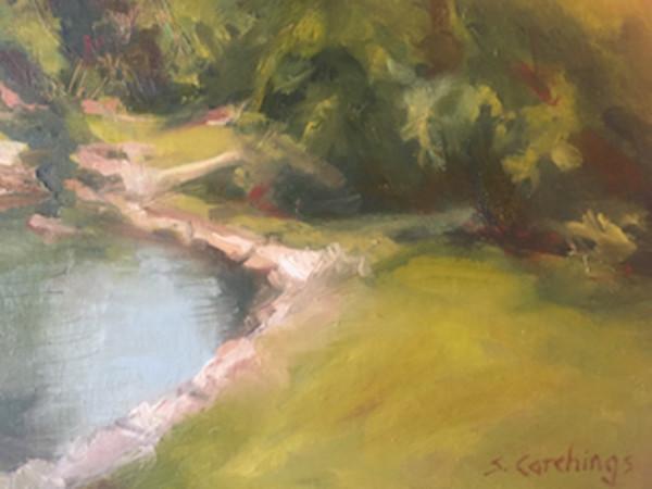 Cheekwood Pond