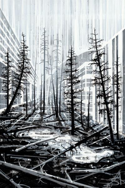 Windfall (Toronto + Banff + Kootenay National Park)