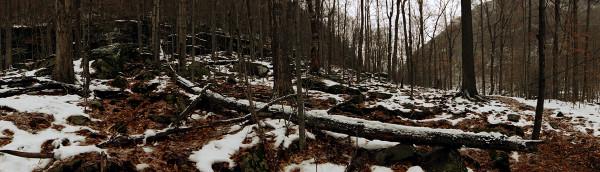 Devil Path Log