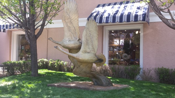 Swan Duet