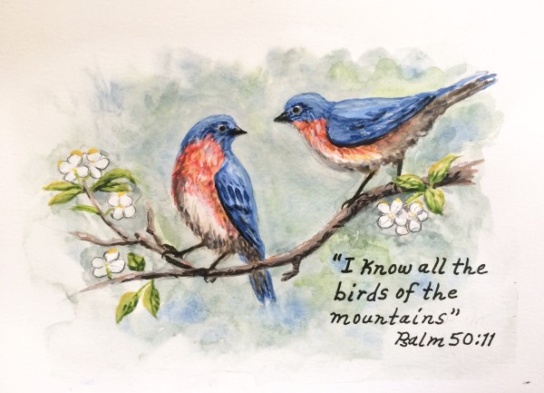 """""""I know all the birds of the mountains"""" (Psalm 50:11)"""